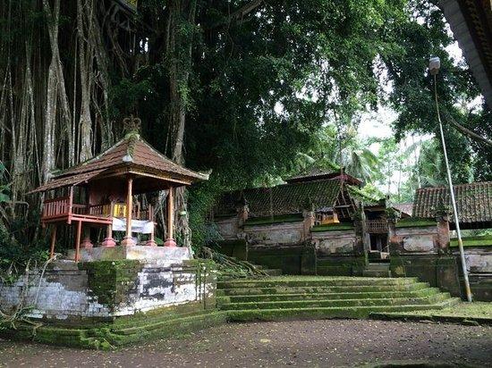 Bali Hai Bike Tours : Temple