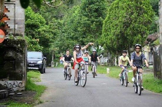 Bali Hai Bike Tours : Local roads