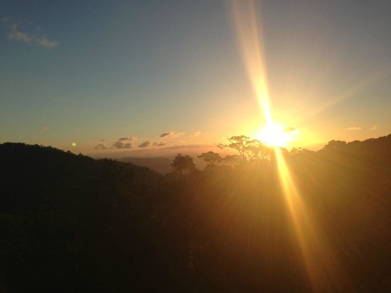 O'Reilly's Rainforest Retreat, Mountain Villas and Lost World Spa: Evening Sunset