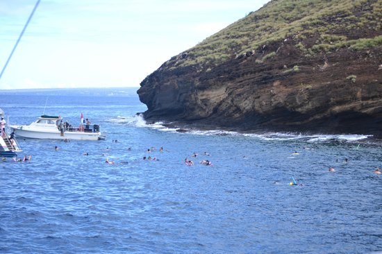 Molokini Crater: what you are here for