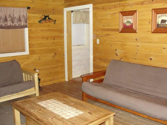 Mountaindale Cabins & RV Resort : Cozy Cabin family room