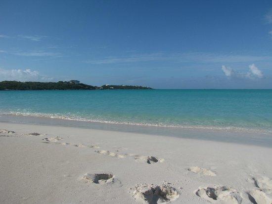 Augusta Bay Bahamas : Secluded Beach