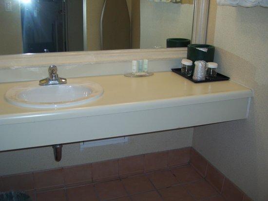 클라리온 호텔 피닉스 테크 센터 사진