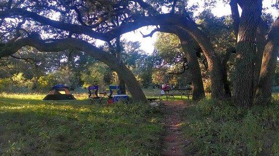 Pace Bend Park: our campsite