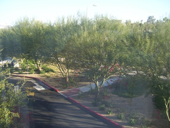 Holiday Inn Hotel & Suites Phoenix Airport : view
