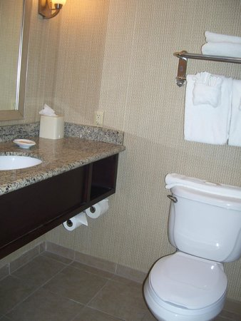 Holiday Inn Hotel & Suites Phoenix Airport : bathroom