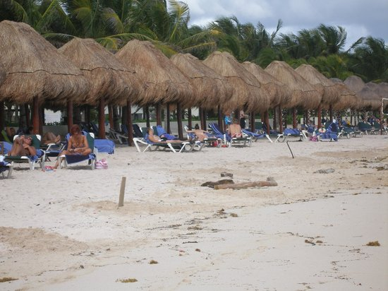 El Dorado Casitas Royale, by Karisma : Everywhere you looked people were enjoying themsleves and the sun