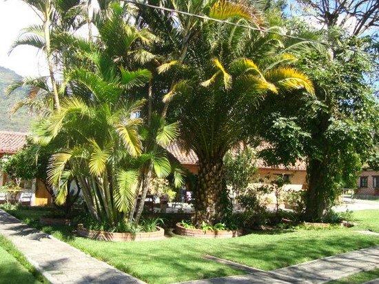 Hotel Regis Panajachel: jardines