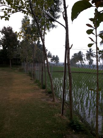 Shanthi Guesthouse: River in the Distance