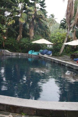 Pacific Resort Rarotonga : Freshwater pool!