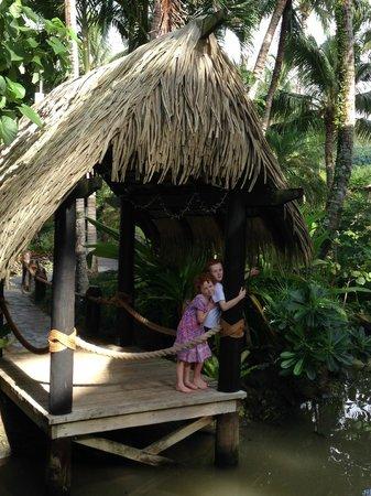 Pacific Resort Rarotonga : A stunning wee hut for a romantic dinner
