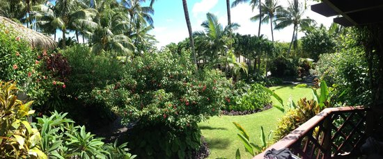 Pacific Resort Rarotonga: garden view