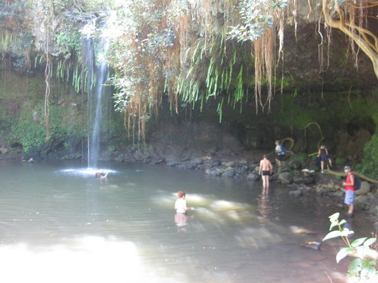 Hike Maui : The First Waterfall