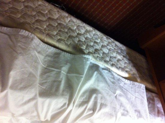 Travelodge Fredericksburg: Le vieux matelas souillé