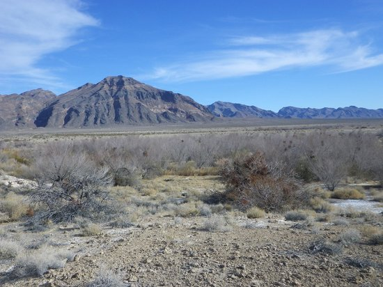 Ash Meadows National Wildlife Refuge : View of the mountains from a vantage point on the boardwalk