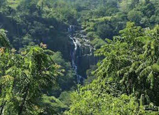 Kandy Hill Tours  - Private Day Tours