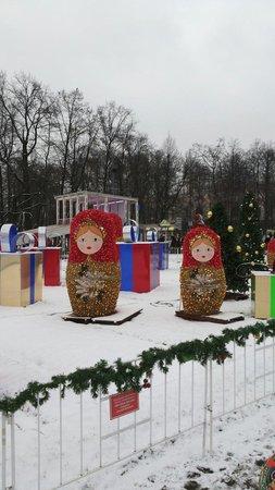 Sokolniki Park: Зимой в парке...