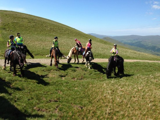 Murthwaite Green Trekking Centre Day Rides: On the summit of Walna Scar - Langdale Trail Ride