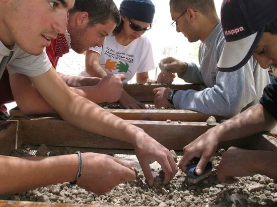 Temple Mount Sifting Project: Visitors Participate in the Wet Sifting