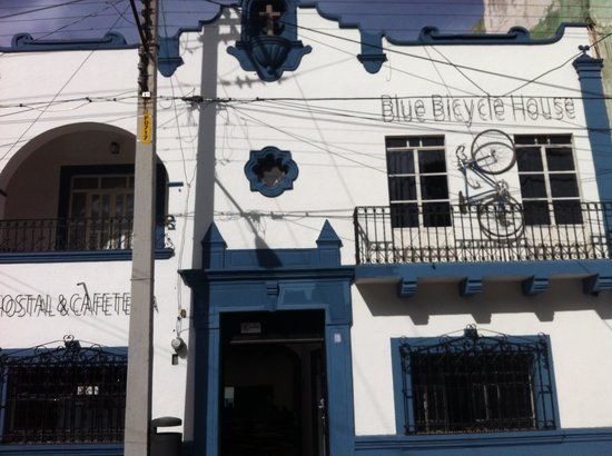 Blue Bicycle House : Blue Bicycle Hotel