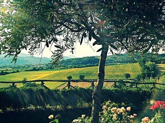 Agriturismo Coppo: Panorama dal giardino