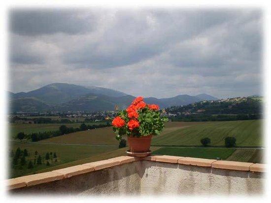 Agriturismo Coppo: Panorama del monte Tezio