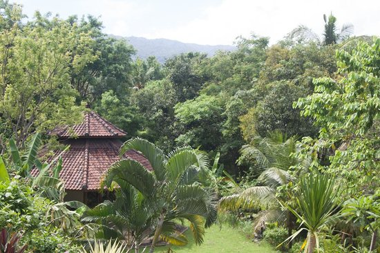 Sananda Bungalows: pavilion in the garden