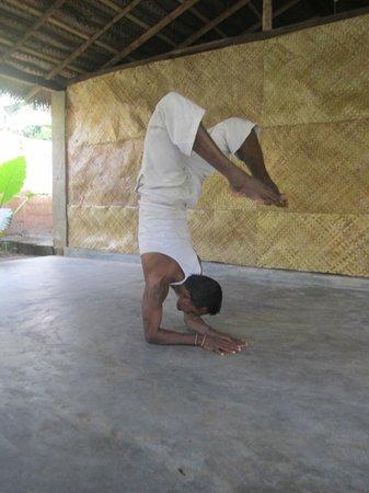 Yoga with Asiri : The Scorpion Pose