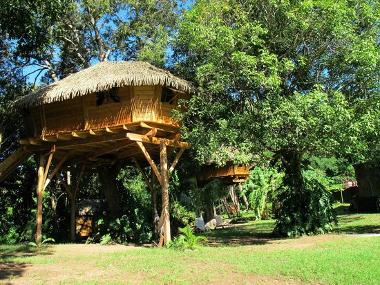 Habitation Getz: notre cabane Zoé
