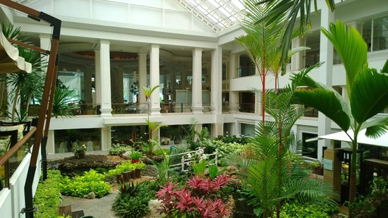 Dusit Thani Pattaya : Enjoying breakfast with a view to a tropical garden