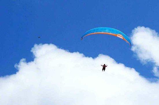 Cape Chinen Park: Colorful Gliders