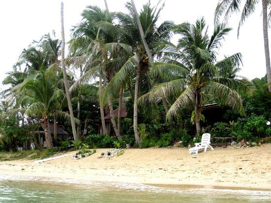 Bang Po Village: Eigener Strand