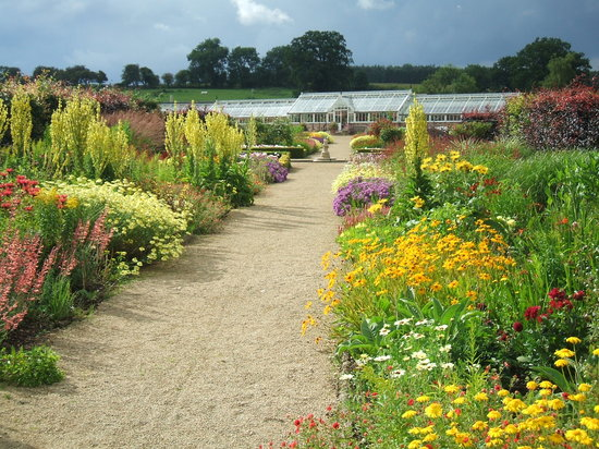 Helmsley Walled Garden in summer