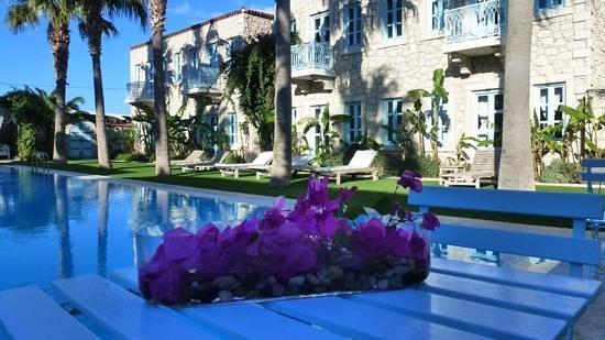 Manastir Alacati Hotel and Suites : rooms and pool