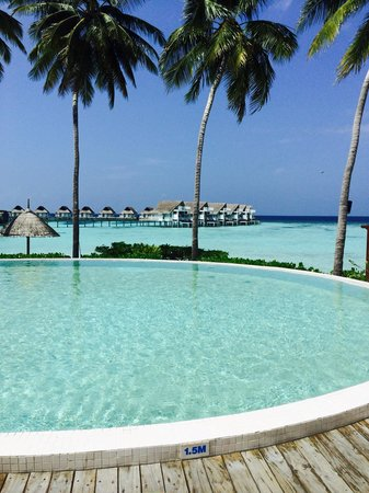 Centara Grand Island Resort & Spa Maldives : Paradise