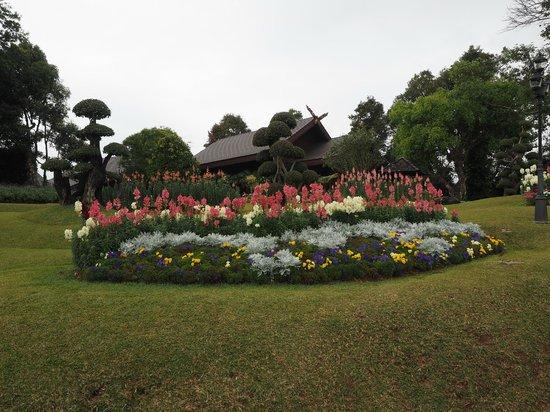 Doi Tung Royal Villa : Parco della villa della Regina madre