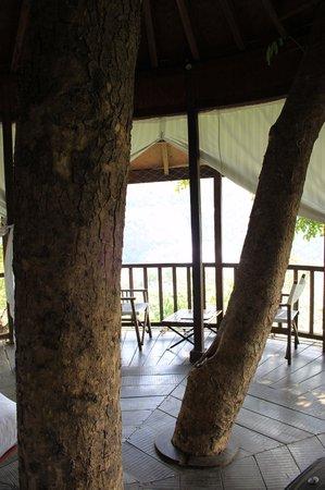 Rainforest Resort Athirapally Falls : Treehouse