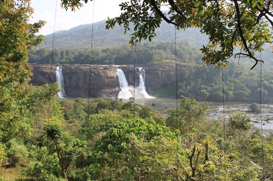 Rainforest Resort Athirapally Falls : View from treehouse