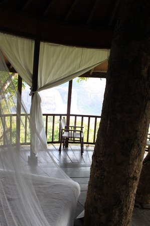 Rainforest Resort Athirapally Falls : Treehouse (with view)