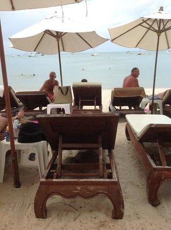 White House Beach Resort & Spa: Вид с третьего ряда лежаков.