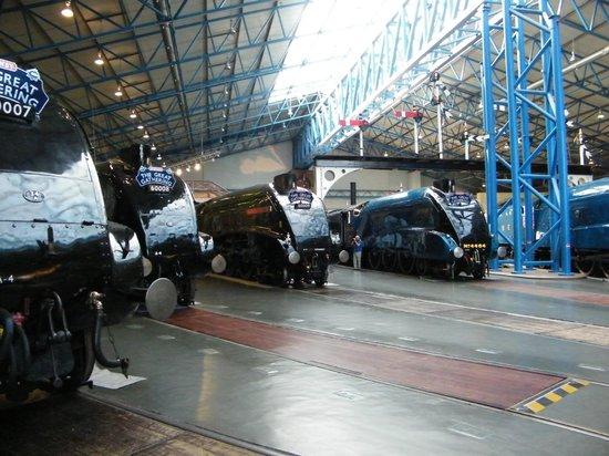 British National Railway Museum : The Great Gathering