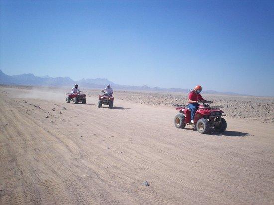 Safari Sahara  - Hurghada Sunset Desert Tour : Away You Go