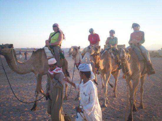 Safari Sahara  - Hurghada Sunset Desert Tour : On Camels a Bit Bumpy