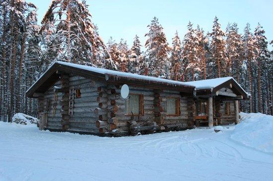 Medvezhka Hotel: Три Медведя