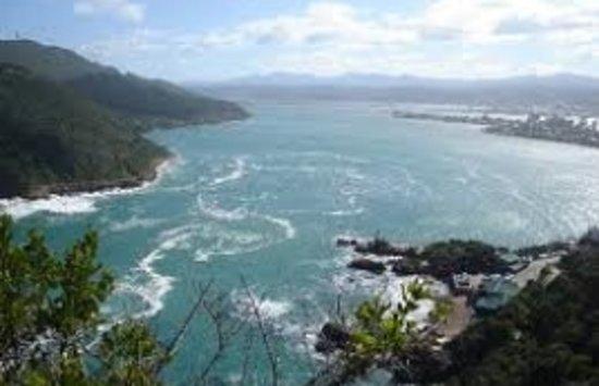 Island Vibe Knysna: View from Knysna Heads