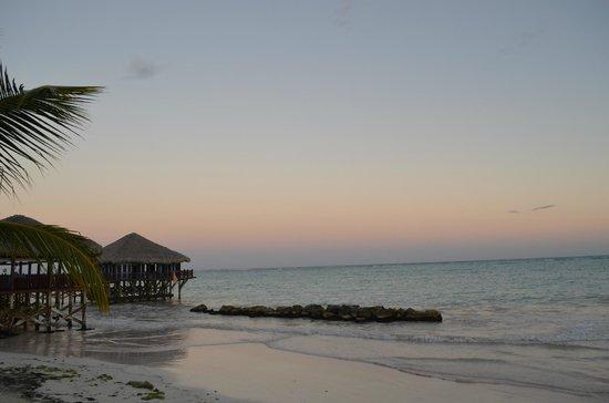 Sanctuary Cap Cana by AlSol : Praia e restaurante Blue Marlin.