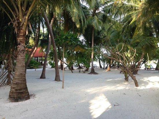 Kurumba Maldives: vista desde el bungalow