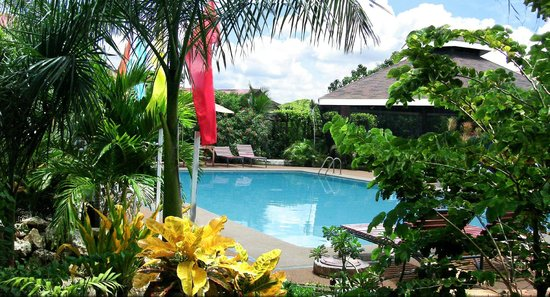 Pool 2 Picture Of Alta Cebu Resort Cordova Tripadvisor