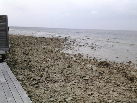 "Kuramathi Island Resort: View from ""Deluxe"" Water Villa with Jacuzzi"