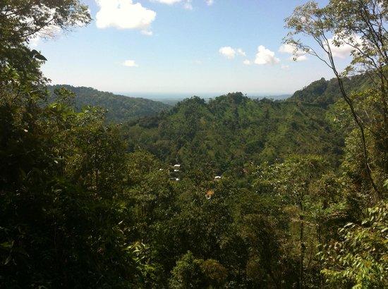 Los Campesinos Ecolodge: Vista desde el Mirador